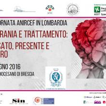 17/6/2016 - VIII Giornata ANIRCEF in Lombardia